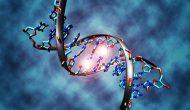 表观遗传药物淋巴瘤显示积极疗效