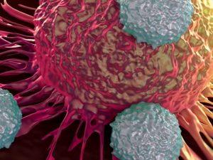 Tecentriq一线肺癌显示附加疗效