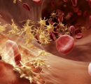 血友病市场面临流血冲突