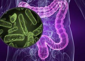 罗氏继续投资微生物组技术