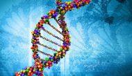 无间道:正常组织肿瘤相关基因变异