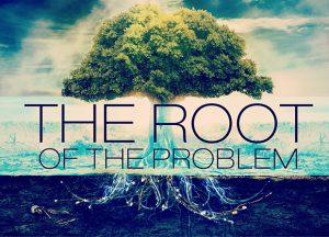 root-revival-2014-1