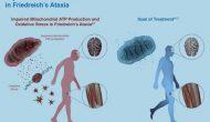 亲电甾体药物显示罕见共济失调症疗效