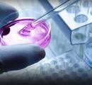 寻找新药简单化学反应同样有效吗?
