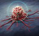 适应疗法:肿瘤治疗新策略