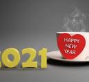 药源展望2021
