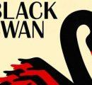 黑天鹅事件:丑小鸭变白天鹅